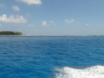Риф острова Сент Джозеф
